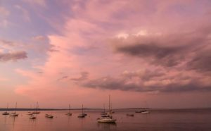 twilight clouds tinged pink above sailboats in Bayside harbor