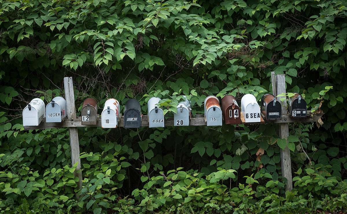 12 mailboxes lined up on a weathered support