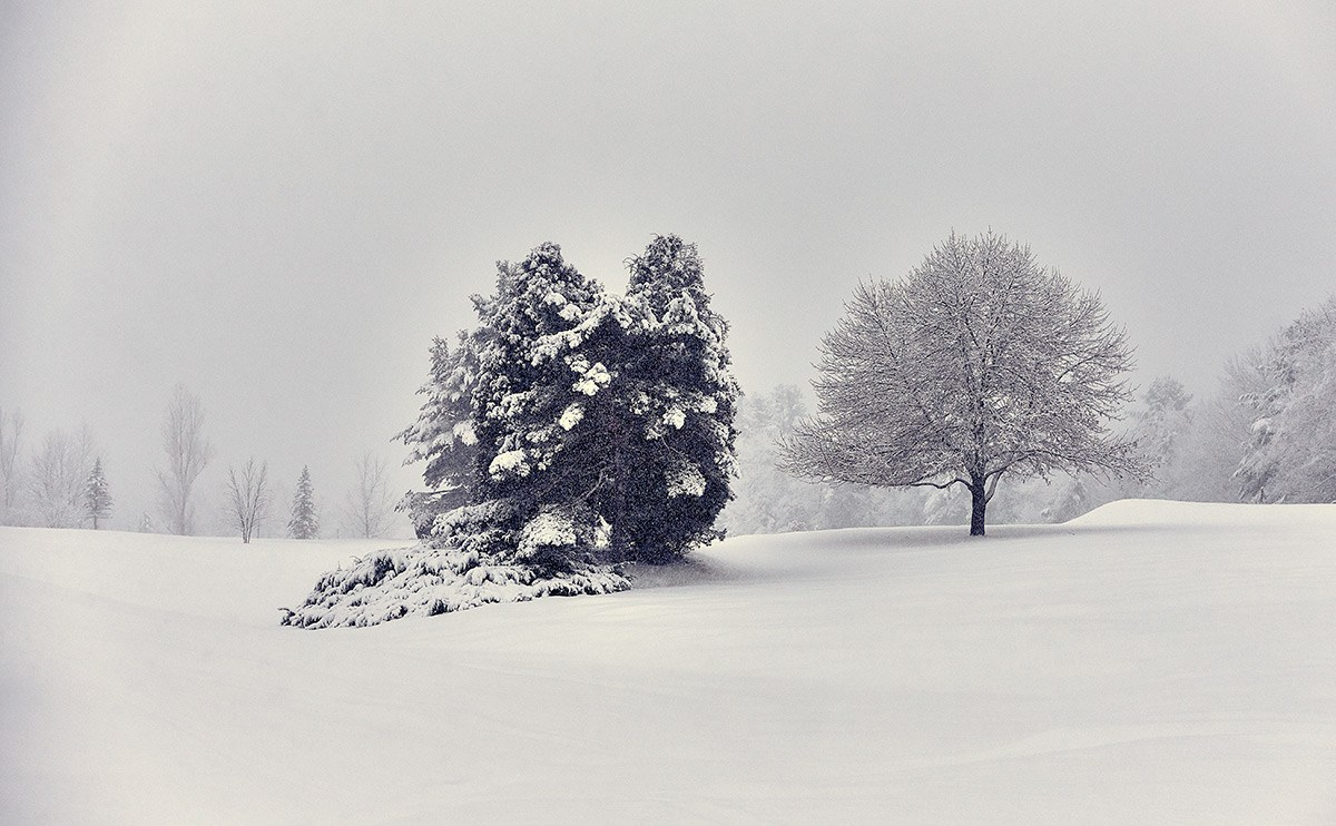 Snow blankets the Northport Golf Course