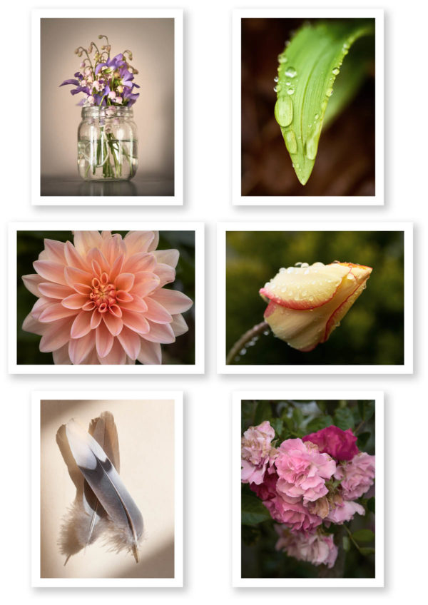 grid of images included in note card volume 2