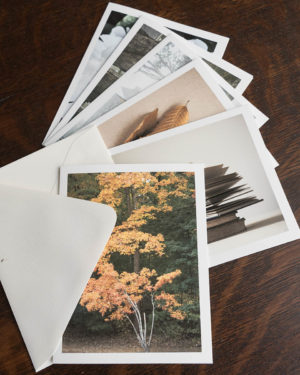 note cards volume 3, fanned out